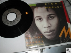 Ziggy Marley & Melody Makers «Tumblin' Down»